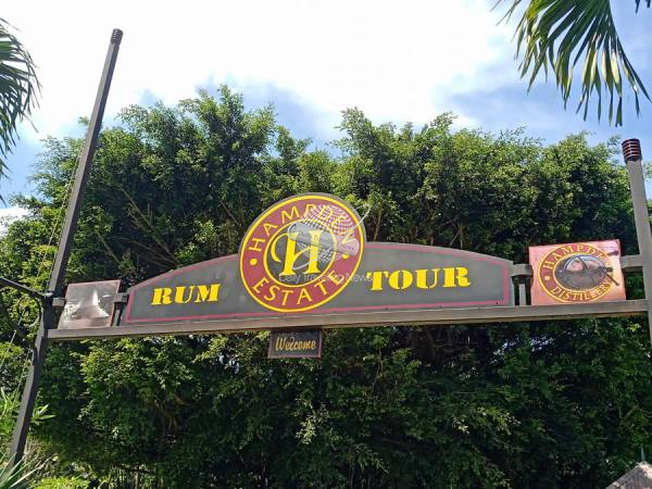 Hampden Rum Tour, visita a una antigua destilería de Run